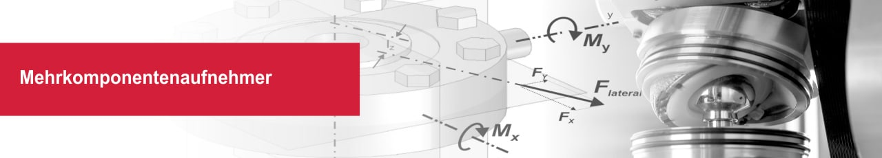 Mehrkomponentenaufnehmer